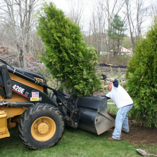 landscaping services in Westport, MA